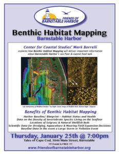 Benthic Habitat Mapping