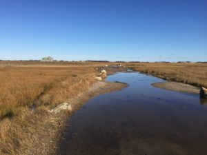 Pretty Marsh Scene on Barnstable Harbor's Navigation Road